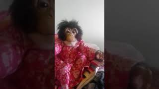 Furreal chimp Theresa may