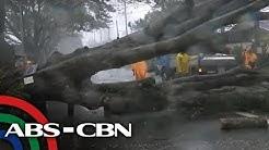 Mga poste, puno pinatumba ng bagyong Tisoy | TV Patrol