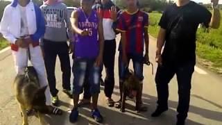 big boss clash aissa  hacha Rjal_ video clip officiel wlad zeralda