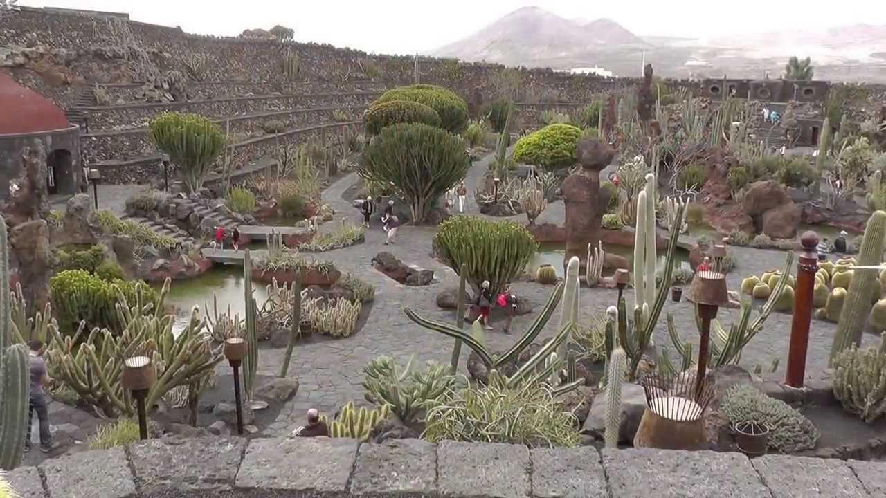 lanzarotes highlights jardin de cactus