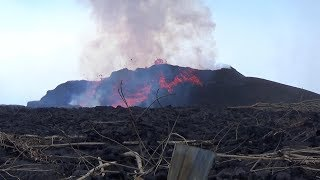 Lava Fissure 8 And Helping Lava Refugees Inside Leilani Estates Hawaii June 19 2018