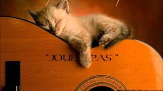 """joue pas- remix 2011-françois feldman """"dominique♪♫marie-pierre"""""""
