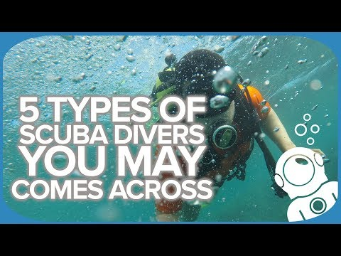 5 Types Of Scuba Divers You May Comes Across