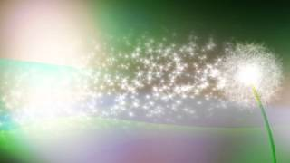 MUSIC BY SRI CHINMOY . LIGHT OF THE DREAMS ... TENDER MEDITATION ...