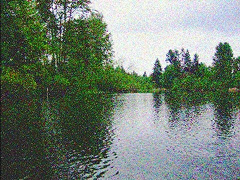 Photoshop Tutorial Pointillism How To Make A Pointillist