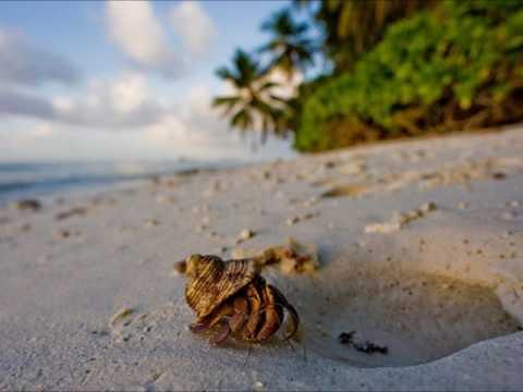 VQ9HF Diego Garcia Island. From dxnews.com