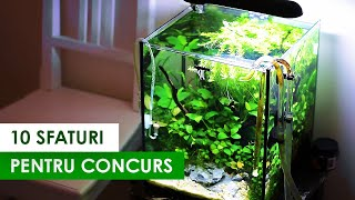 10 sfaturi sa te pregatesti pentru Romanian Aquascaping Contest