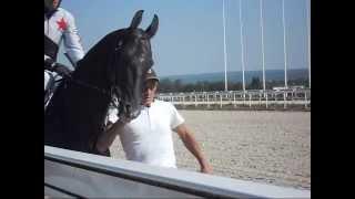 """Скачки на приз """"Гелишикли""""  на лошадях 3-х лет и старше ахалтекинской породы."""