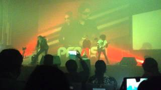 darkkey live performance-black butterfly