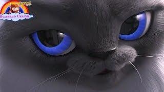 Детская Песня  Планета Кошек-Мультик-Сказка
