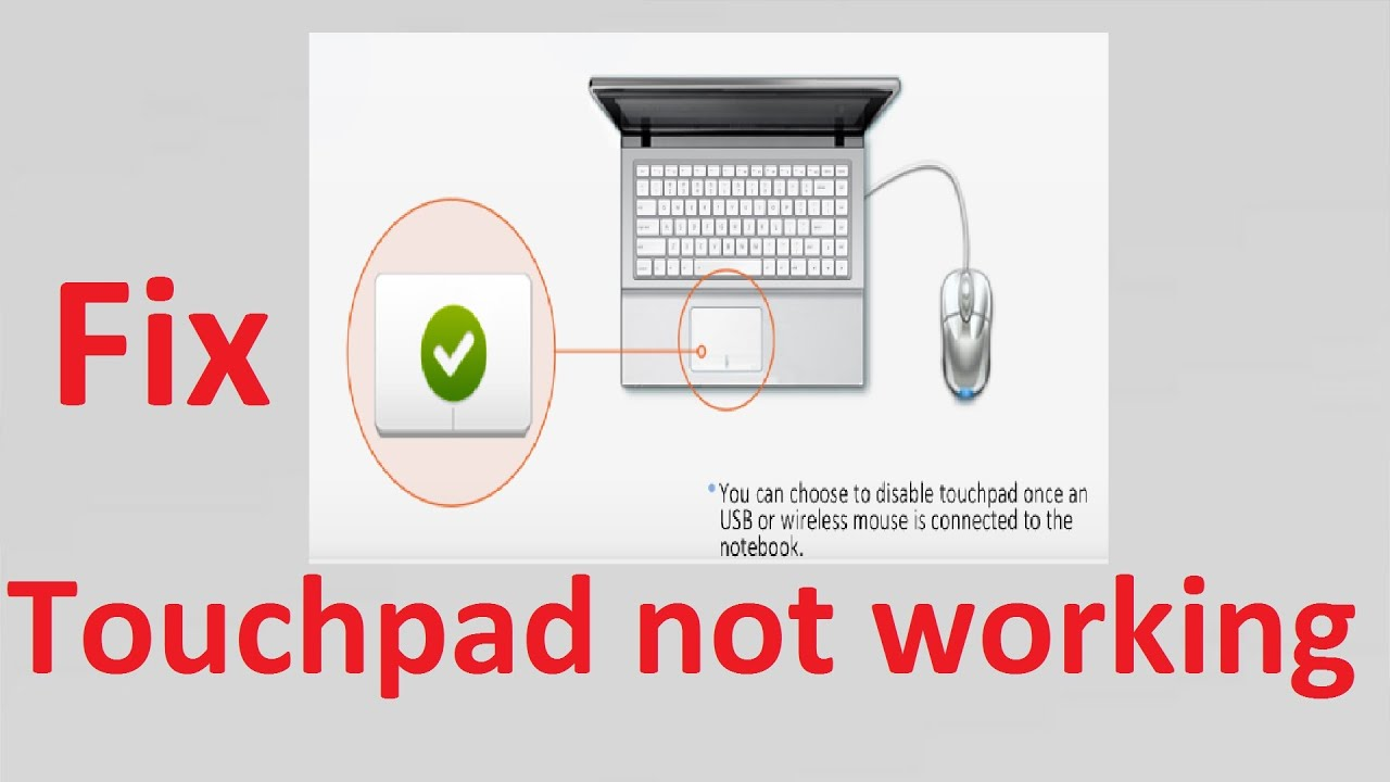 Fix Touchpad Not Working After Connecting Usb Mouse Howtosolveit Wiring Diagram