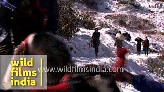 Yak ride at Tsomgo Lake, Sikkim
