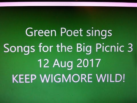 Songs for the Big Picnic 3 - Green Poet (5 songs)