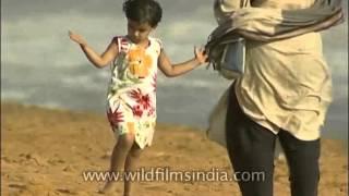Walking barefoot along a sandy beach in Thiruvananthapuram