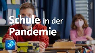Die gymnasiallehrer in niedersachsen sind mit dem start das neue schuljahr unzufrieden. der philologenverband (phvn) kritisiert vor allem teile des hygien...