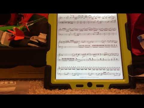 Mozart Piano Sonata NO 8 1st Movement