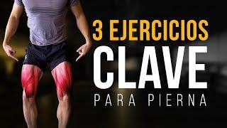 Lateral utilizados pierna músculos eleva los