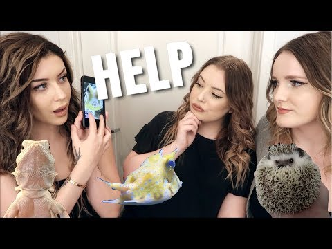 GUESSING OUR PETS!? w/ Taylor Nicole Dean and Emilee Rose (Taylor Failed)