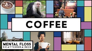 Coffee Facts and Life Hacks! - Mental Floss Scatterbrained