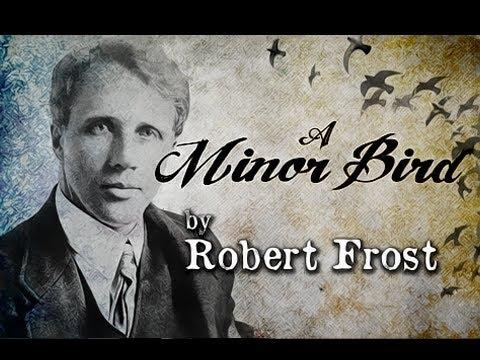 A Minor Bird