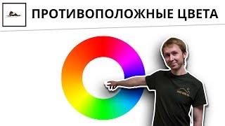 Цветовой круг и дополнительные цвета в живописи. Их контраст