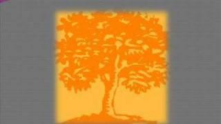 Трейлер - Осенние цветы 2. Во имя любви