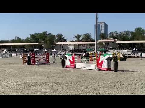 Z7 REGAL DON   Dubai Polo Club   Grand Prix