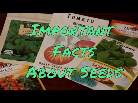 Hybrid, Heirloom, Organic, Non-GMO - Understanding Seeds
