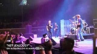 Hey Jealousy (live)