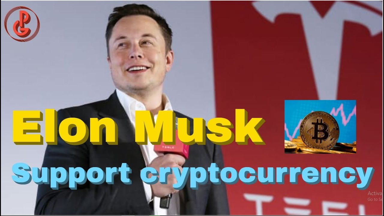Musk says he supports crypto in battle with fiat money