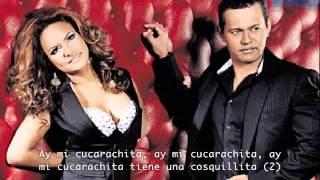 la cucarachita de Samy y Sandra Sandoval (con letra)