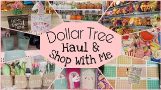 New Items Dollar Tree Haul and Shop With Me • July 2019