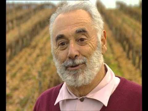 La Route des Vins - Languedoc