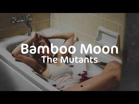 The Mutants | Bamboo Moon | La casa de Papel | Money Heist