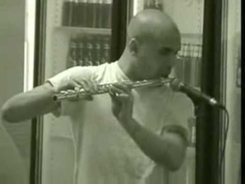 flute beat box