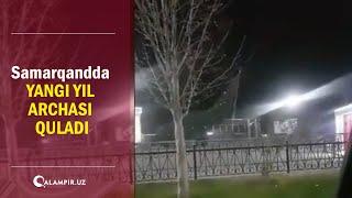 Samarqandda yangi yil archasi quladi