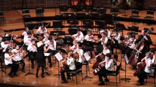 Romanian Folk Dances 4, 5 & 6 - Bela Bartok - Chamber Strings - Sydney Youth Orchestra - SYO