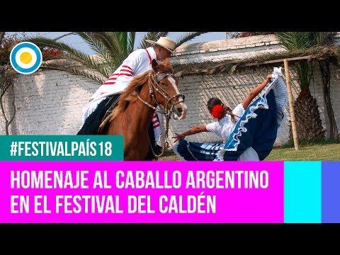 Festival País '18 - Homenaje al caballo argentino en el Festival de Doma y Folclore del Caldén