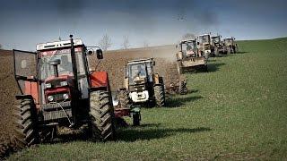 Wiosna 2015 w Gospodarstwie Rolnym Mokrzyn