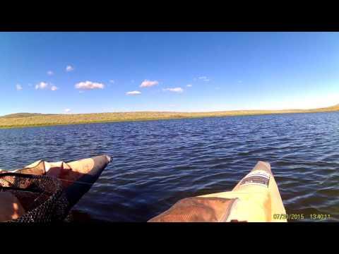 Wyoming Fly Fishing Grayling