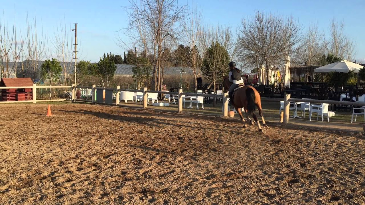 Lara With Horse 1-4