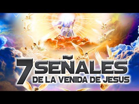 7 SEÑALES DE