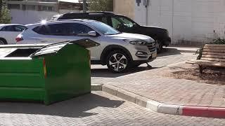 Израиль Эйлат / сняли квартиру, машину / впечатления