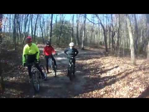 Into the Woods Part II : Camden County College Trail