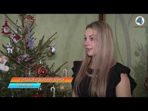 TV-4: Куди подіти новорічні ялинки - розповіли комунальники Тернополя