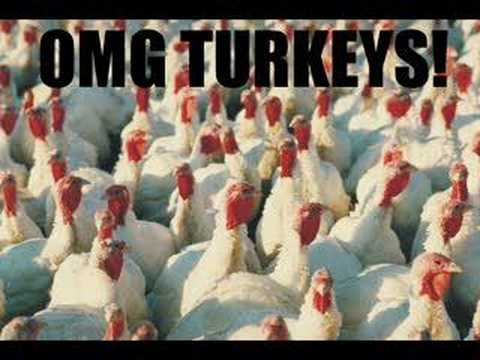 Da Turkey Song