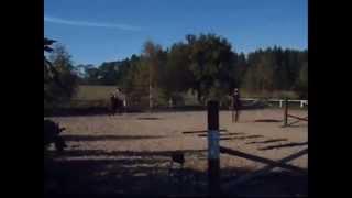 Stadnina koni Runowo- filmik od Oli