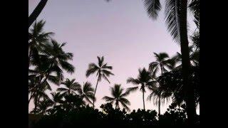 J Boog & Fiji - Smoking Bomb Bud/ DJ Quik - Tha Bombudd