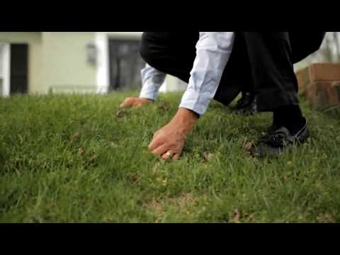 Tenacity Herbicide - YouTube