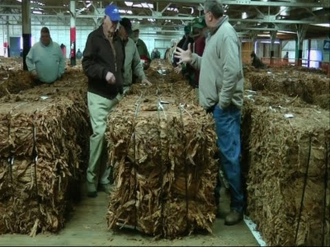 Fading Songs Of Kentucky Tobacco Auctioneers
